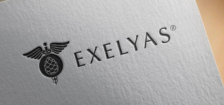 logo exelyas